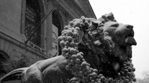 One of Edward Kemeys's bronze lions at the entrance to the Art Institute of Chicago (photo by Christian Newton, via Flickr)