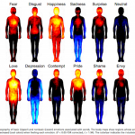 The Topography of Emotion: New Study Maps Feelings in the Body / Hyperallergic
