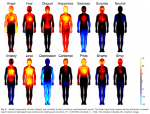 Bodily topography of emotions associated with words (via pnas.org)