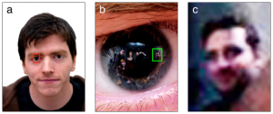In the middle image, five bystanders are clearly visible in the zoomed-in corneal reflection. (Credit: PLOS One)